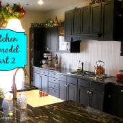 Kitchen Remodel Part #2