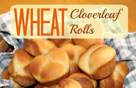 Wheat Cloverleaf Rolls at www.SpindlesDesigns.com