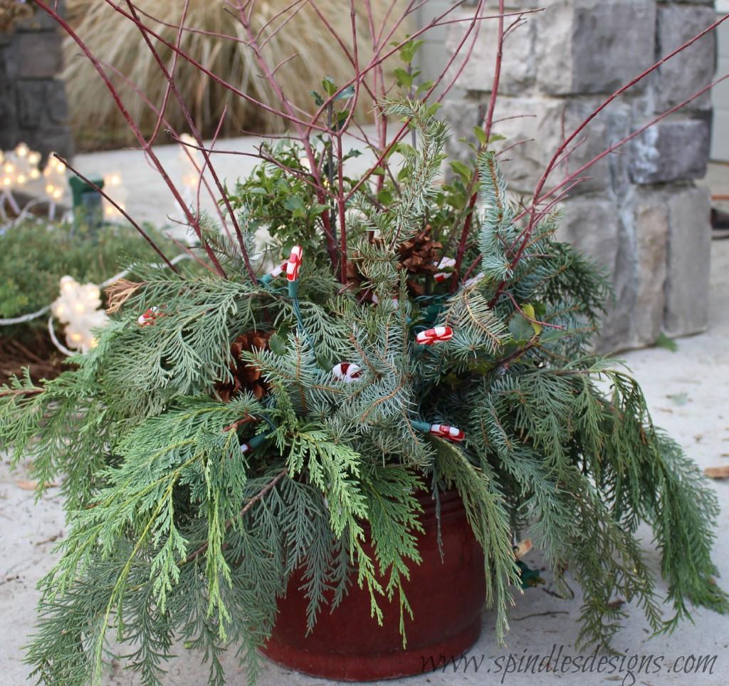 Christmas pot 7