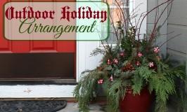 Outdoor Holiday Arrangement